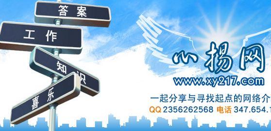 華人網上廣告心揚網